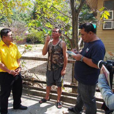 Замена водяных насосов на севере Паттайи