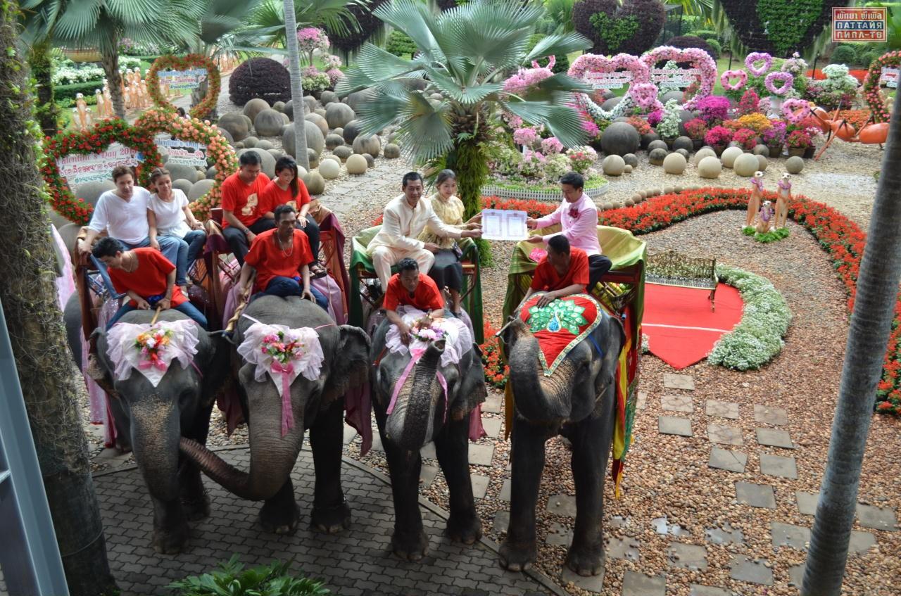 Свадьба в Нонг Нуче в день святого Валентина в Паттайе