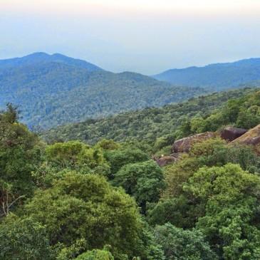 Восхождение на Святую гору Кхао Китча Кут с компанией 7 Стран