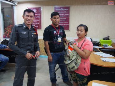 Арестован медленный лори в Паттайе