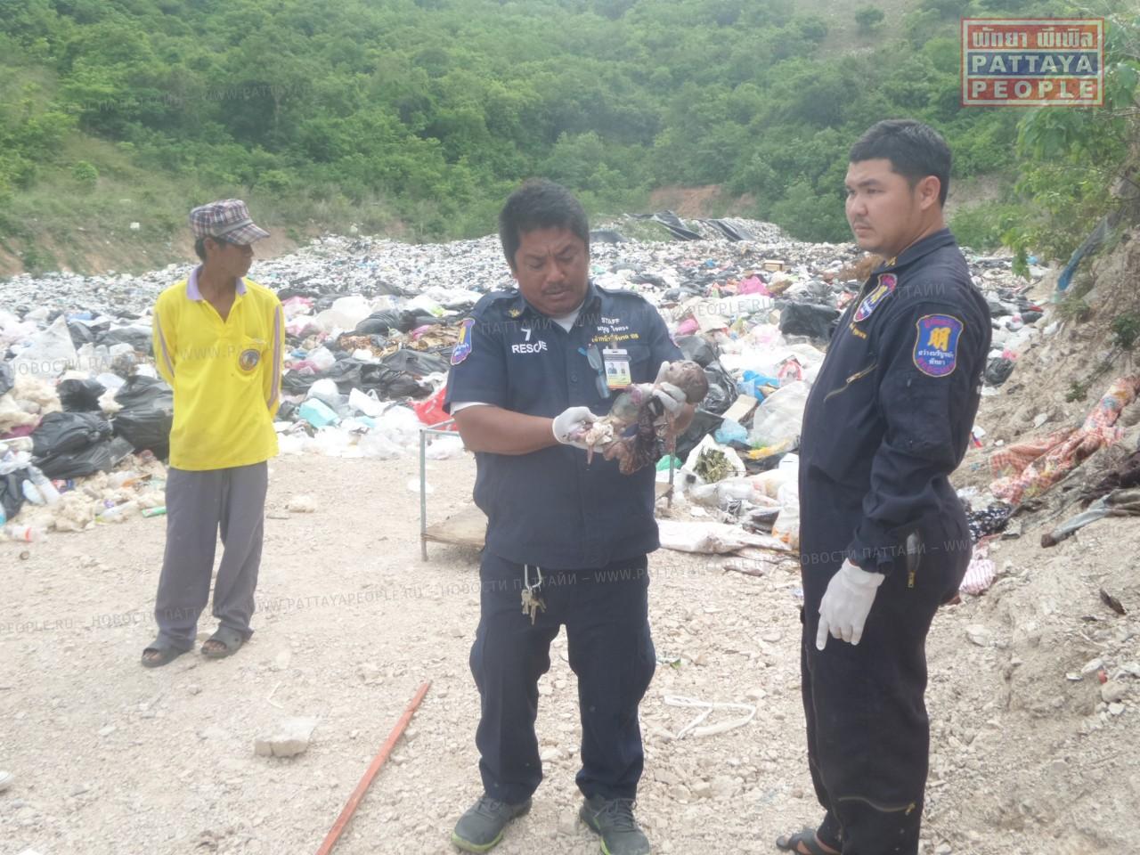 На острове Ко Лан в куче мусора найдет 7-месячный эмбрион