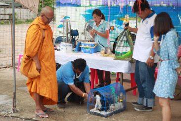 Бесплатная мед.помощь в Паттайе