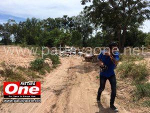 Незаконный сброс химических отходов в Бангламунге