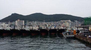 Путешествие в Пусан, Южная Корея (день 3)