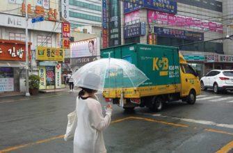 Путешествие в Пусан, Южная Корея