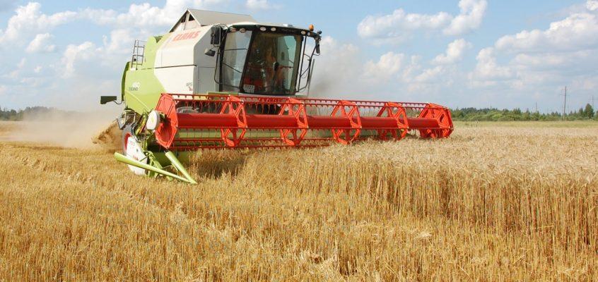 Российское зерно в Таиланд