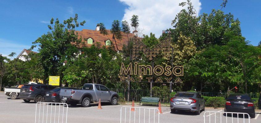 Статуя упала на 9-летнего мальчика в парке Мимоза в Паттайе
