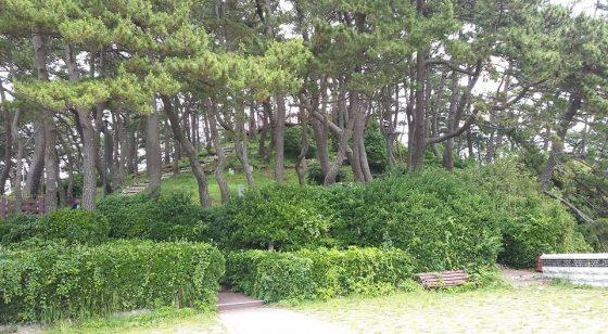 Пусан Южная Корея Songjeong Beach