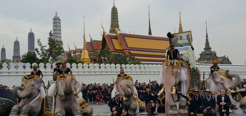 Белые слоны Аюттхаи прощаются с Королем Таиланда