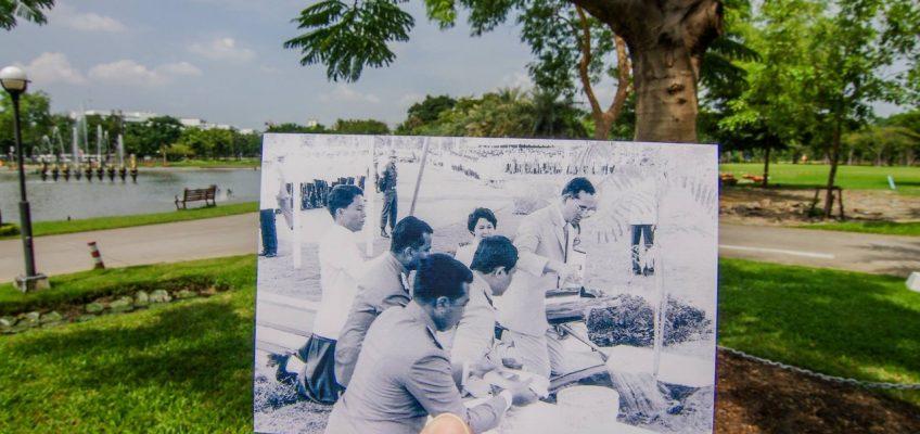 Необычный фотопроект в честь Короля Таиланда