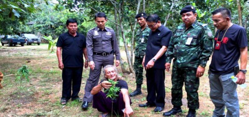 Австралиец развел плантацию марихуаны в Таиланде