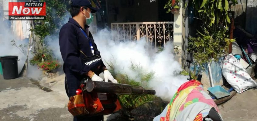 Паттайя защищается от комаров Денге