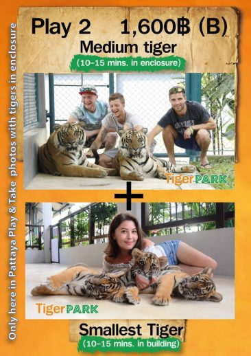 Tiger Park Pattaya