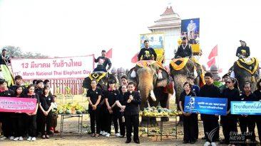 Таиланд отмечает день Слона