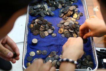 в Таиланде врачи нашли деньги в черепахе