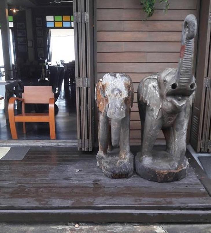 На Самуи туристы украли слона