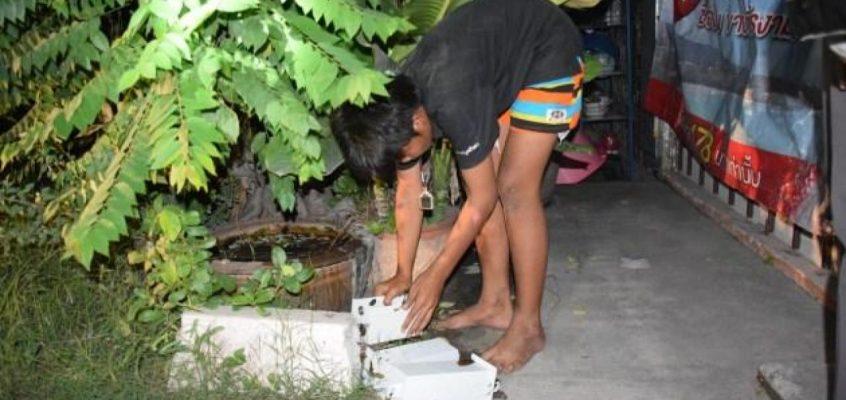 Подростков задержали в Паттайе с мешком 10-батовых монет