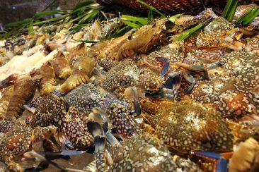 Буфет из морепродуктов в Паттайе в отеле Равиндра