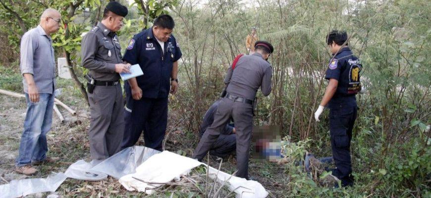 Слон в Паттайе убил гида и ранил двух туристов