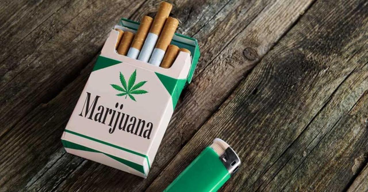 Сигареты мальборо с коноплей марихуаны фото кустов