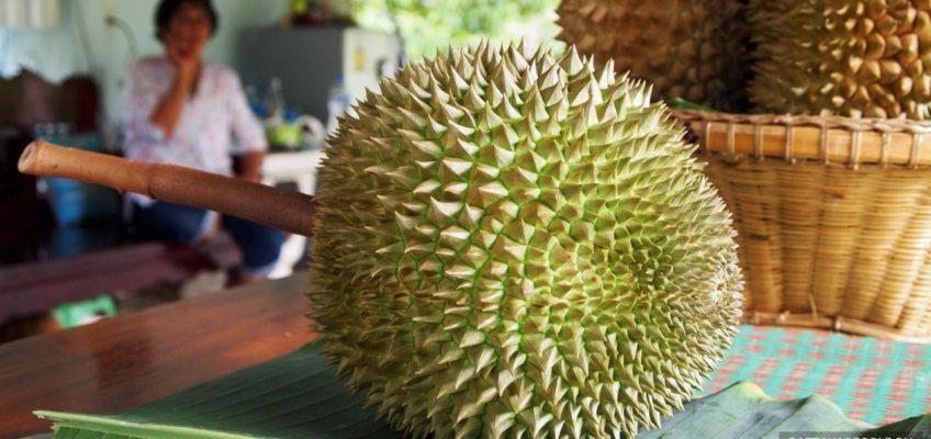 «Идеальный» дуриан был продан в Таиланде за 1,5 миллиона батов