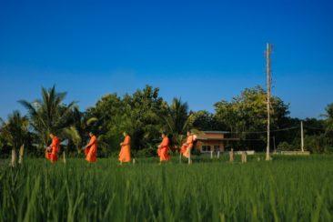 Путешествуйте по Таиланду - север Королевства