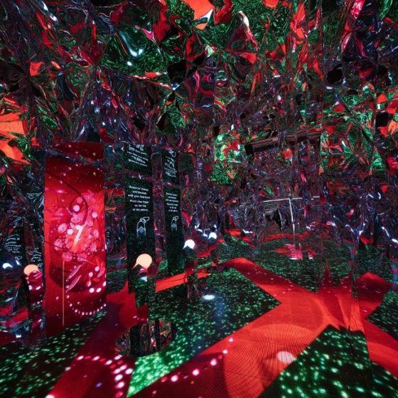 Выставка электронных цветов в Бангкоке (видео)