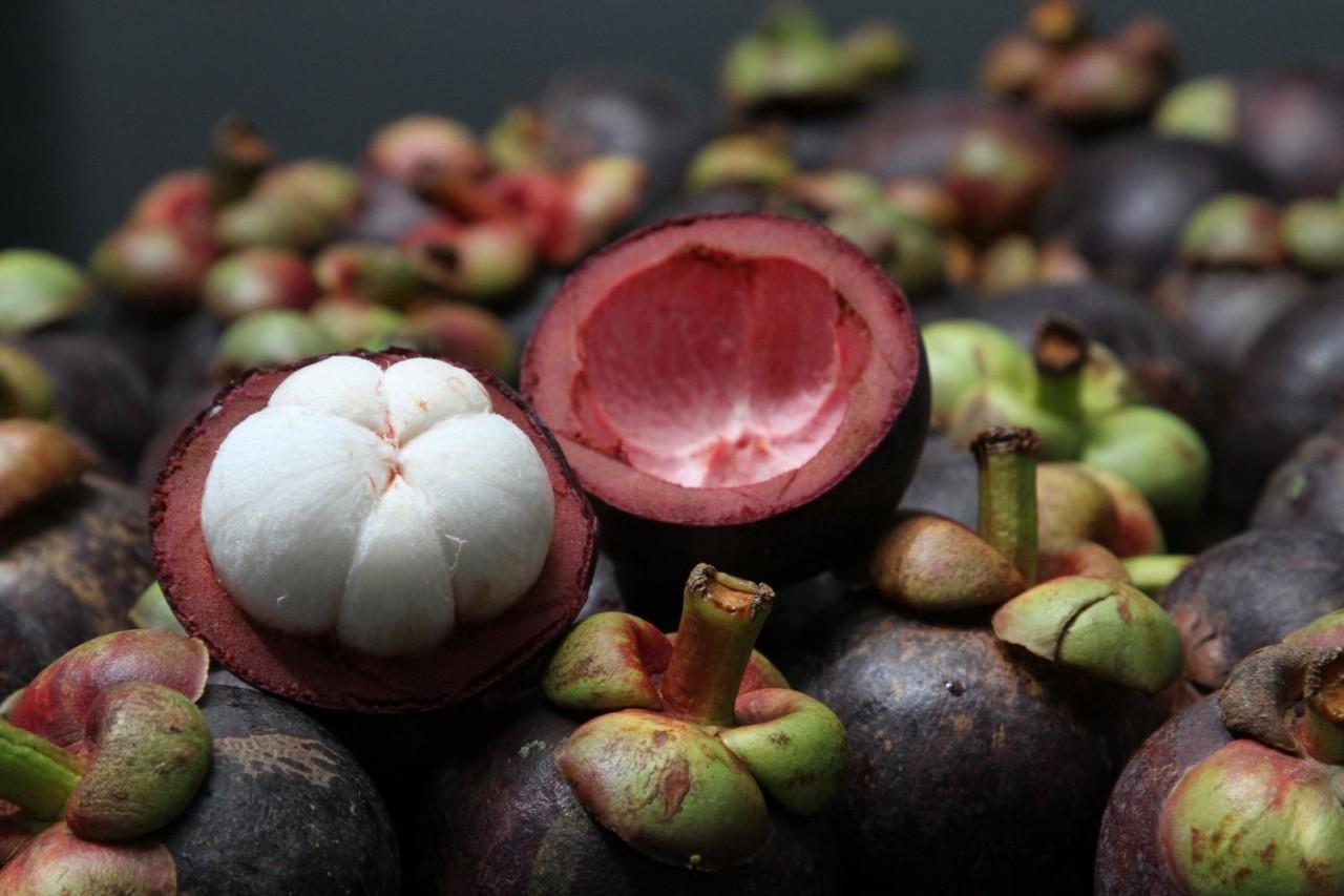 Тайские фрукты должны спасти экономику страны