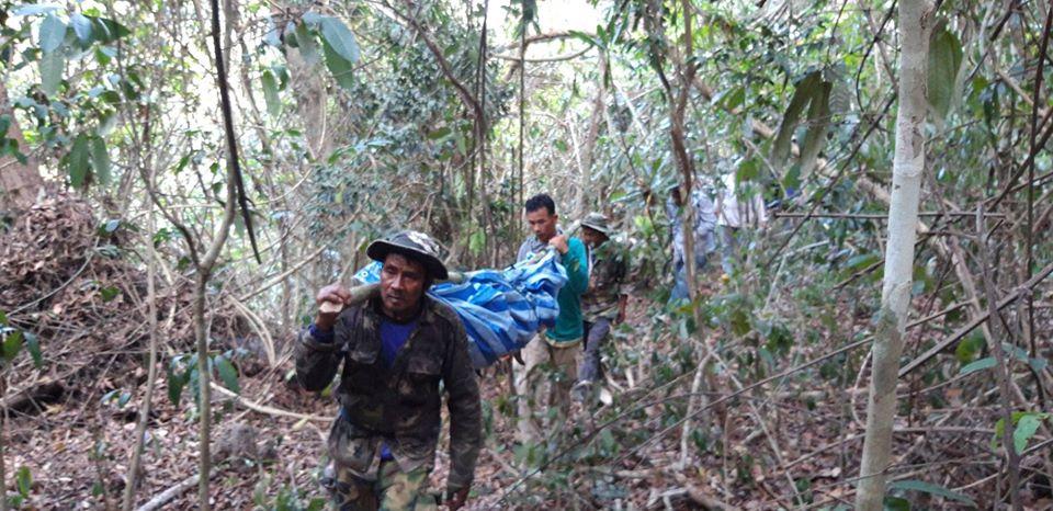 В тайском национальном парке дикий тигр задрал человека