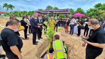 Тропический сад Нонг Нуч в Паттайе будет выращивать марихуану (видео)