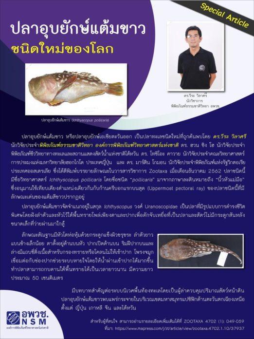 Рыбу с человеческим лицом поймали в Таиланде