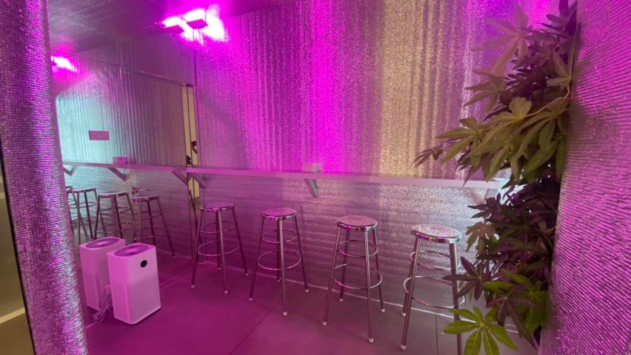 ВБангкоке открылся первый кофешоп сблюдами изконопли