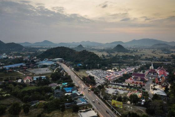 Летучих мышей в Таиланде проверили на коронавирус